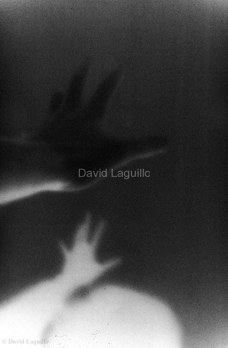 (C) David LAGUILLO
